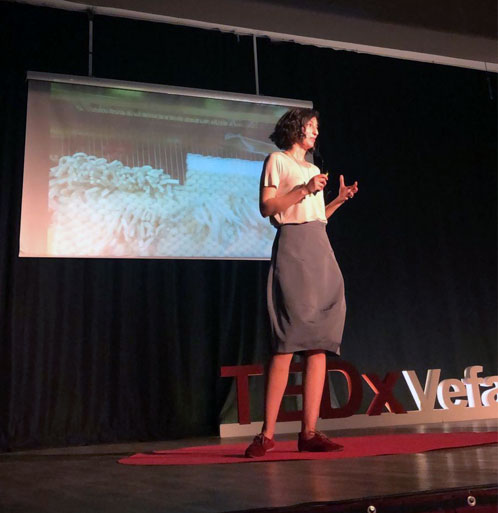 news-tedxvefalisesi
